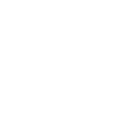 customized plans icon